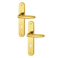 Poignée de porte clé en L Verona Hoppe en laiton poli 2811042