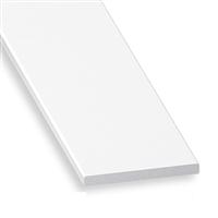 Profilé plat en polyester et fibre de verre - largeur 24 mm - épaisseur 2.5 mm - longueur 1 m CQFD 2047-5313